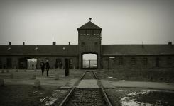 Cinco olhares sobre Auschwitz